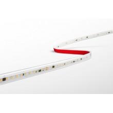 STRISCIA LED ACCENTO 4.8W/m - 24W - 60 led/m - 3000K - 420 Lm/m - IP20 - Color Box - Bob. 5 m