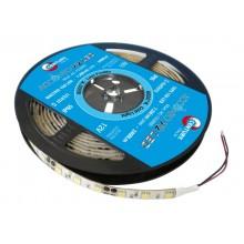 STRISCIA LED ACCENTO 4.8W/m - 24W - 60 led/m - 6000K - 420 Lm/m - IP20 - Color Box - Bob. 5 m